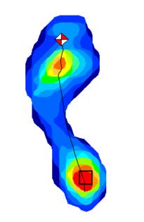 point修正前歩行時足圧部分布移動