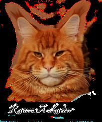 Rascoon Ambassador