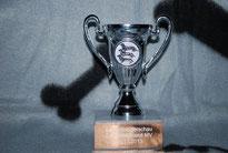 Pokal LSA LV MV 2013