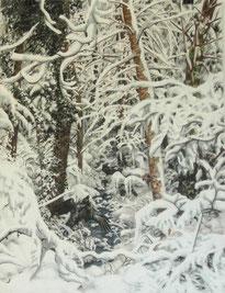 """""""Winterwald"""",  Aquarell und Tusche, 61 x 46 cm, 2012"""