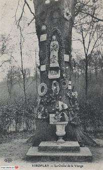 Le Chêne de la Vierge à Viroflay .