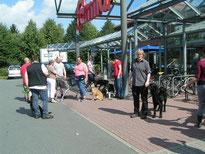 Hundeführerschein Gruppe