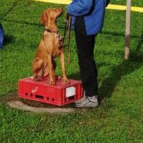 Hundsschui-Feuerer