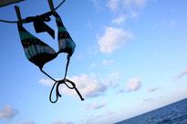 バハマドルフィンスイム:クルーズ船