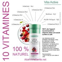Concentré de 21 fruits et légumes issus de l'agriculture biologique.  Rien qu'une cuillère à café couvre 100 % de vos besoins quotidien avec 10 vitamines importantes. VITA ACTIVE DE LR