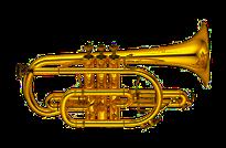 Yamaha Kornett, Blasinstrument