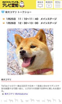次のブログは画像をクリック!