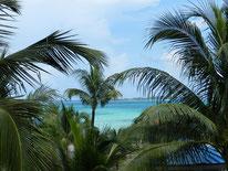 Blog Bahama's 2013