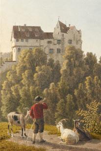 """der Blick vom """"Galgen"""" Salenstein auf das Schloss (und über den Untersee)"""