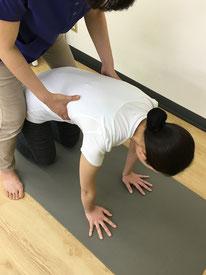 側弯症の肋骨変形を四つ這いで修正していきます。