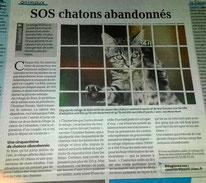 Le Petit Bleu, version papier du 30 juillet 2015