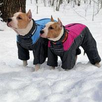 одежда для больших собак, одежда для средних собак, купить, комбинезон для собак, дождевик для собаки, обувь для собак, собака, одежда для собак, LIMARGY, FORMYDOG, OSSO