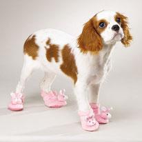 купить, обувь для собак, pomeranian, spits, собака, маленькая собачка, одежда для собак, носочки для собак, LIMARGY, FORMYDOG