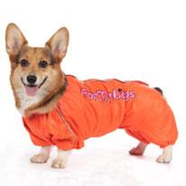 одежда для такс, одежда для вельшкорги, купить, комбинезон для собак, дождевик для собаки, обувь для собак, собака, маленькая собачка, одежда для собак, LIMARGY, FORMYDOG, OSSO