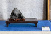Bonsai Club Settelaghi Varese - Premio IBS Suiseki