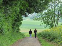Wandern am Feldrand, Waldweg, NABU