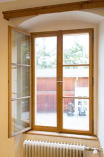 Kranz Kastenfenster, Insektenschutz, Insektenschutzgitter