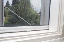 Kranz Kastenfenster, Insektenschutzgitter, Rollo