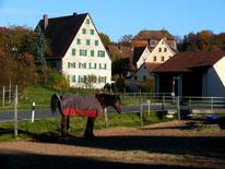 Ortseingang Neunhof