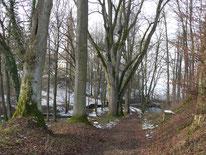 """Wanderweg """"Rotpunkt"""" zur Kirche in Beerbach"""