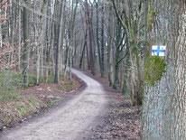 Wanderweg nach Günthersbühl