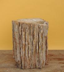 Versteinertes Holz, Höhe 35cm, Breite 26cm, Tiefe 16cm. Stirn-fläche poliert.    24 Kg, Preis: 215.-