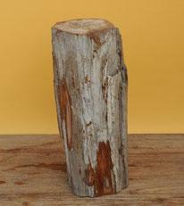 Versteinertes Holz. Höhe 40cm, Durch-messer 13cm. Stirnfläche poliert. 14 Kg, Preis: 126.-