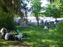 Picknickwiese neben dem Festplatz