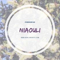 Etherische niaouli olie