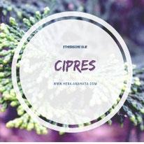 Etherische olie Cipres