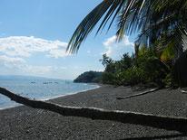 Strand Playa Nicuesa Costa Rica