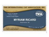 Tica, member, pedigree,chats,bengals, gato bengal, criadero bengal internacional