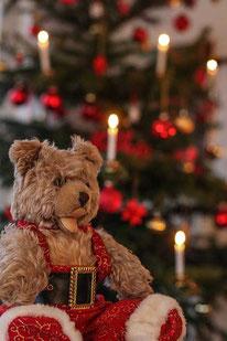 Weihnachtsgedichte: Teddy