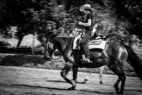 Fotoshooting Mensch und Pferd