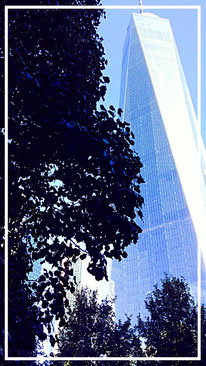 World Trade Center New York City Tree survived