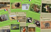 fiches animaux sauvages pedagogiques a telecharger et a imprimer