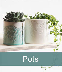 Beautiful delicate porcelain pots