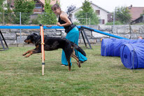 Cours agility chien Vaud, cours dog dancing Vaud, cours clicker training Vaud