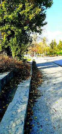 #Mauerpark #Grenze #PrenzlauerBerg