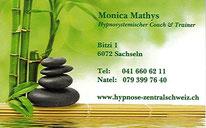 Hypnosystemischer Coach & Trainer, Sachseln