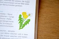 """Illustrationen """"Basenfasten fürs Wochenende"""", Südwest"""