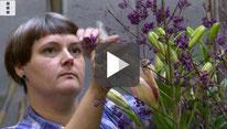 Video: Gärtnerei im Rathaus