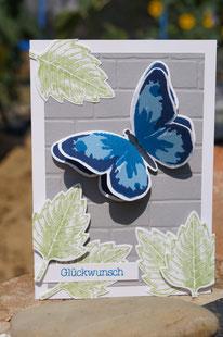 Schmetterling auf der Mauer - Patricia Stich 2015