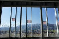 紅葉の山々と高田の桜のコラボレーション