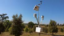 Station Météo Aqualis - station mesures météo automatisée - Agralis