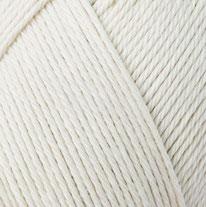 00437 Seashell