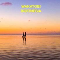 Wakatobi, Indonesien