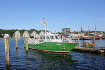 Patrouillenboot beziehungsweise Zollboot Holnis (Flensburg)