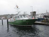 Patrouillenboot beziehungsweise Zollboot Holnis (Flensburg 2014-11-16), Bild 02