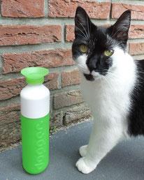 Dopper-groen-review-ervaring-met-kat